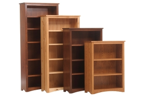 prairie mission executive bookcase